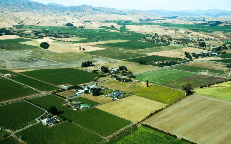 Wairau Plains from above.