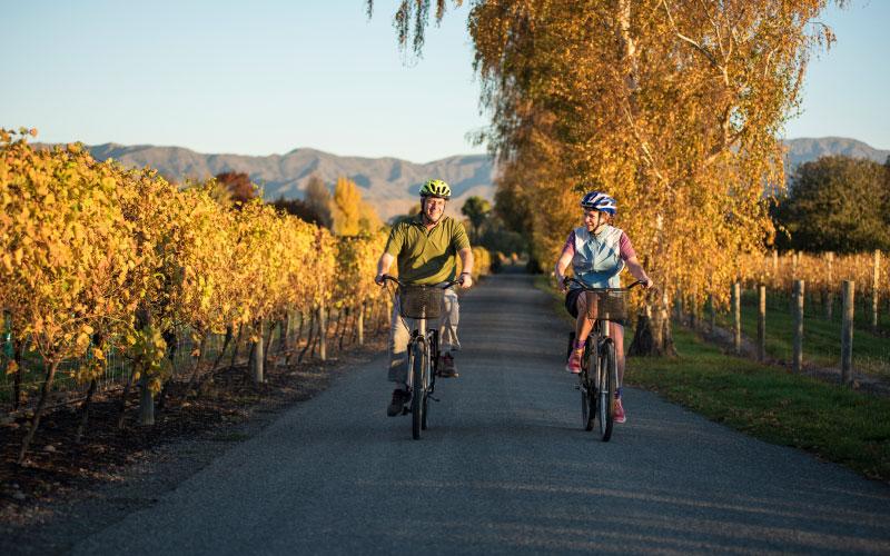 Couple cycling through vineyard in Renwick.